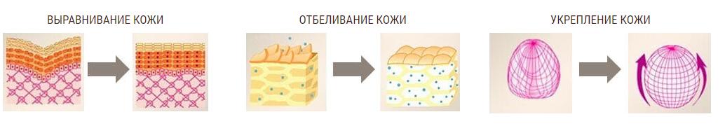 основные направления работы REVOSKIN