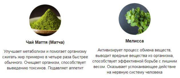 Fruity stix состав1