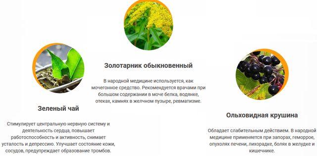 Gardenin Organic Tea состав 1