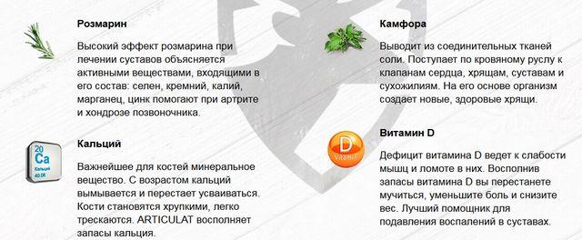 Состав «Артикулат» 2