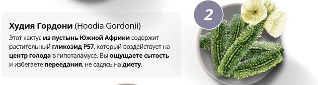 Состав Personal Slim худия гордони