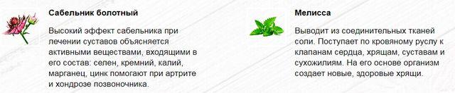 Состав Артонин2